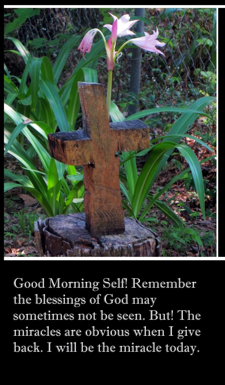 © Photo Artist Susan Ruth Robertson 090-025006100 045.JPG