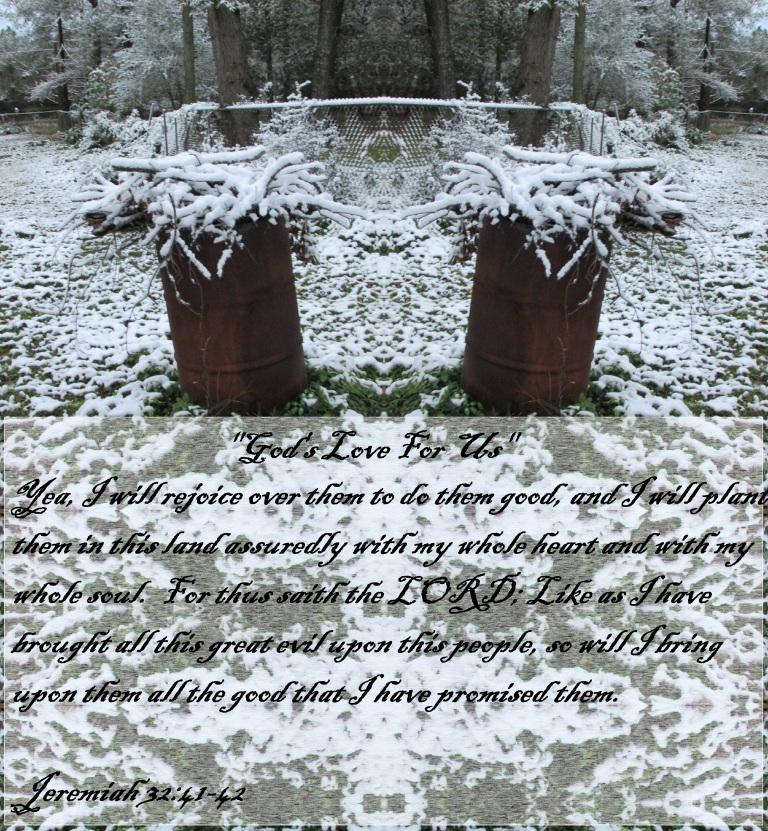 © Photo Artist Susan Ruth Robertson 090025006100 059 - Copy.JPG