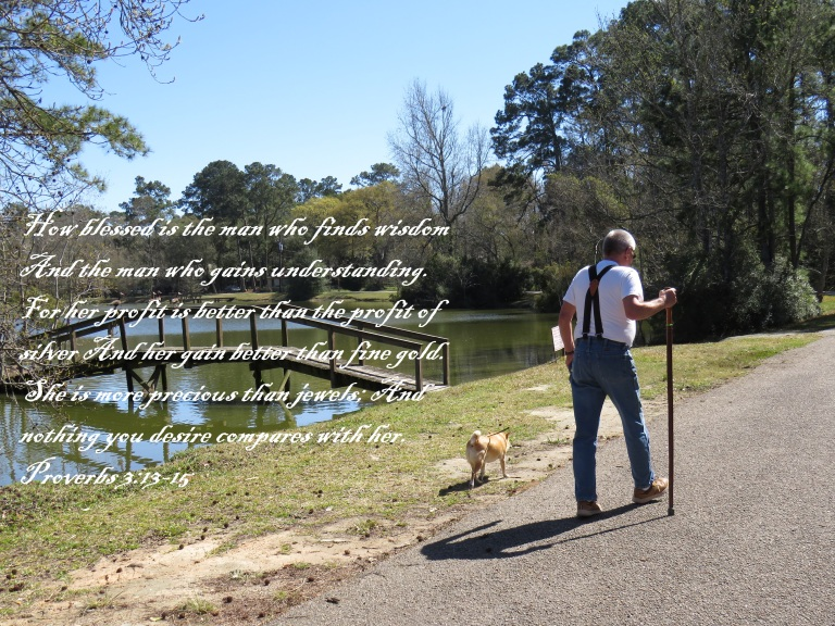 © Photo Artist Susan Ruth Robertson 090025006100 SX540HS 050 - Copy.JPG